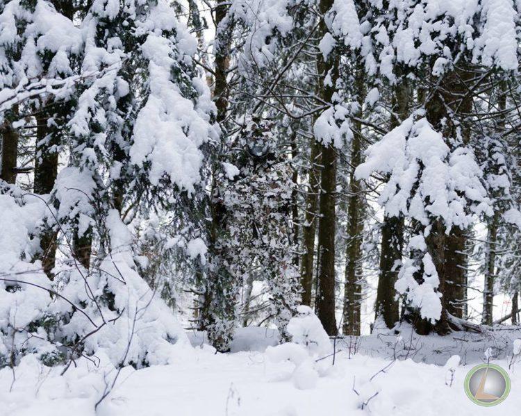 камуфляж на снегу