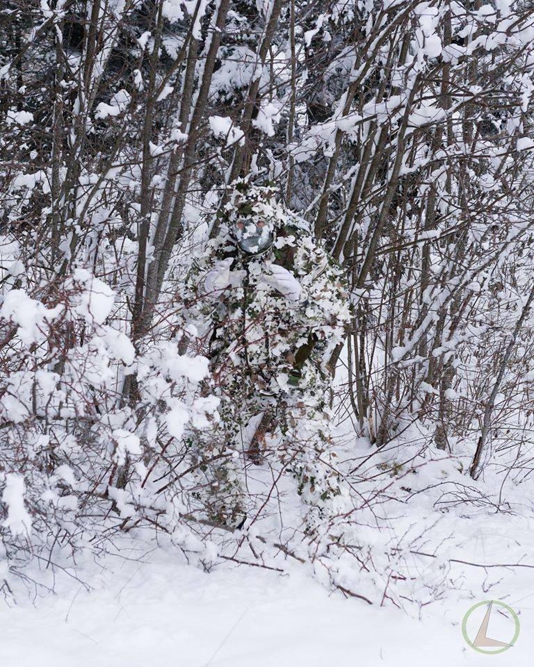 зимний лес - камуфляж