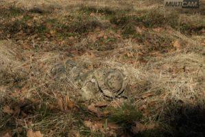 Фото камуфляжа мультикам в полевых условиях