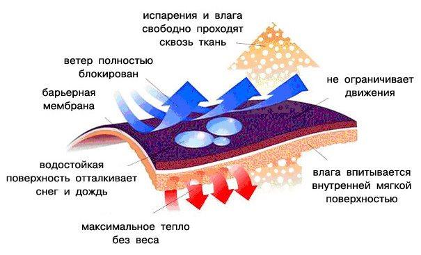 princip2